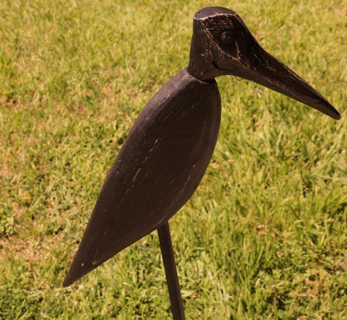 Sam' Crow