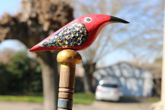 My Favorite Bird
